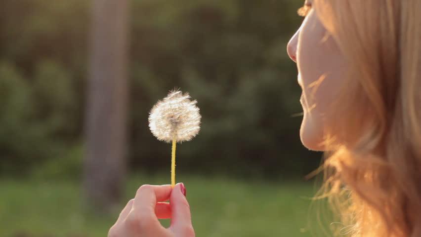Girl Blowing On Dandelion in : stockbeeldmateriaal en -video's  (rechtenvrij) 18336706 | Shutterstock