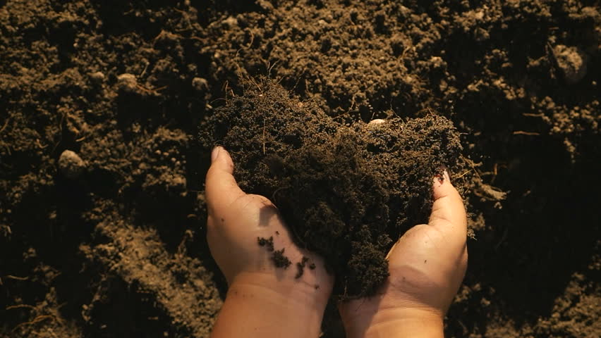 Soil, Agriculture, Sunlight,Slow motion, Farmer hands holding and pouring back organic soil on sunrise light top view shot