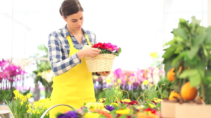 Spring Concept, Woman Florist Takes Stock Footage Video (100% Royalty-free)  18416359 | Shutterstock