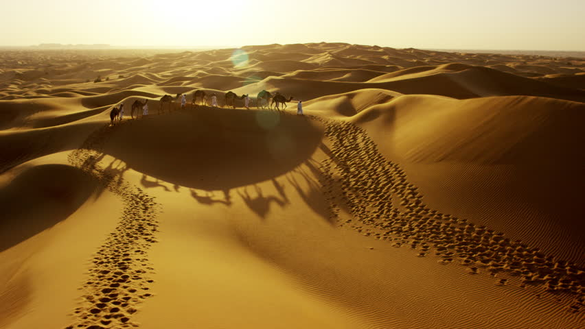 Aerial drone of camel train travelling across a Middle Eastern desert   Shutterstock HD Video #18612380