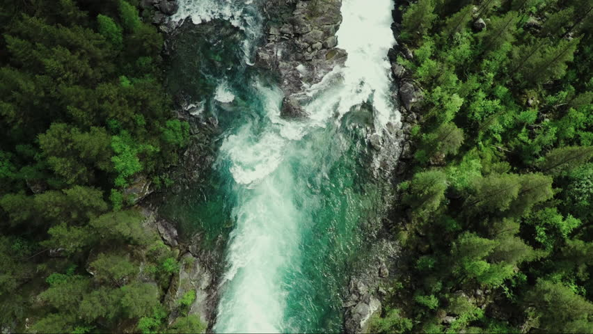 Top Down view of Fast Moving River with Rapids Surrounded by Pine Forest. Shot in Norway | Shutterstock HD Video #18701042