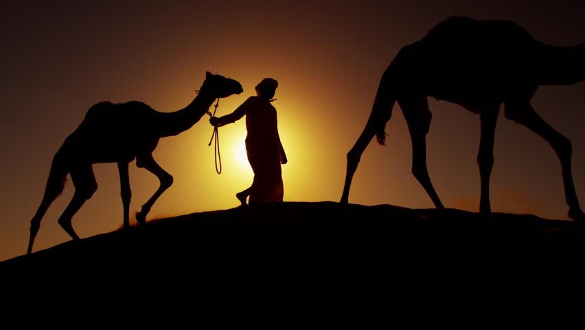 Middle Eastern male camel owners in desert convoy Arabia   Shutterstock HD Video #18709916