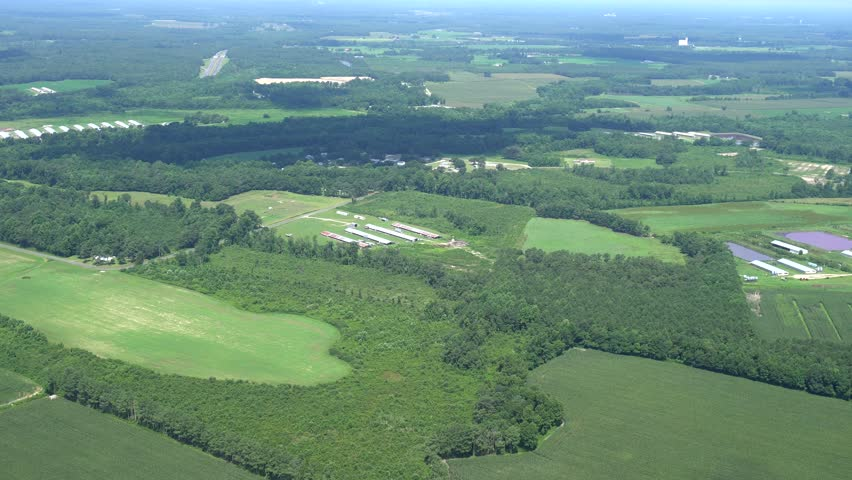 North Carolina Coastal HOG and CHICKEN farming area, Duplin Copunty AERIAL. Flat farm country and sheds, with waste ponds.