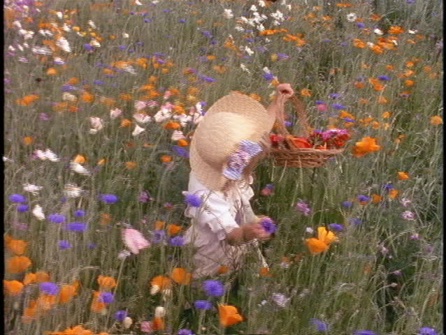 A little girl wearing a straw hat picks wildflowers in a field. | Shutterstock HD Video #1897051