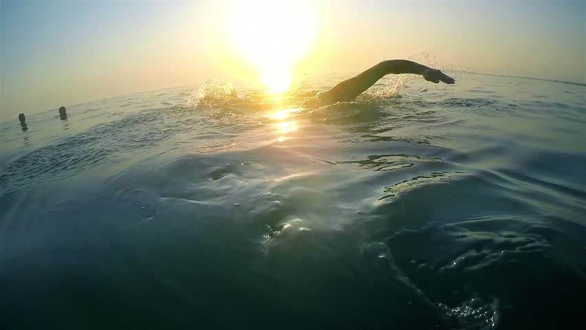 Slow motion of professional swimmer swimming crawl outdoor on sunset, back view   Shutterstock HD Video #19416844