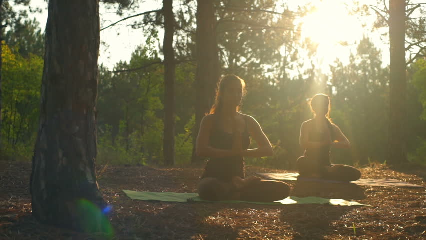 Girls meditating practicing yoga at sunset in forest Padmasana Slow motion   Shutterstock HD Video #19497637
