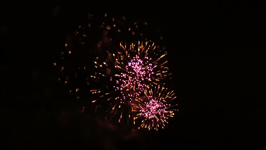 Beautiful fireworks in the park on a summer evening. | Shutterstock HD Video #19543888