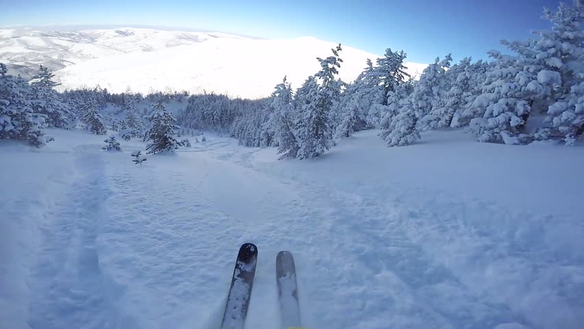 FIRST PERSON VIEW CLOSE UP: Snowboarder riding fresh powder snow in snowy mountain forest. Freeride skier skiing in perfect powder snow off piste in sunny mountain ski resort