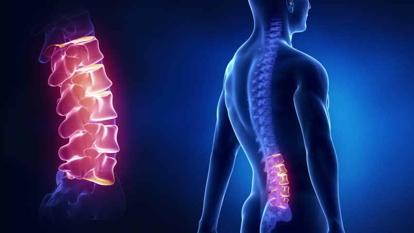 Focused on spine LUMBAR region in loop