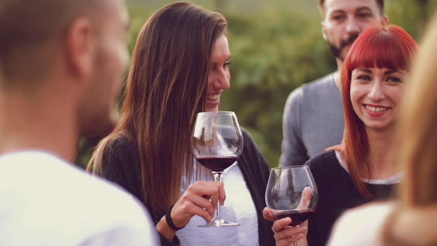 Group of friends toasting with red wine in the vineyard  | Shutterstock HD Video #19787914