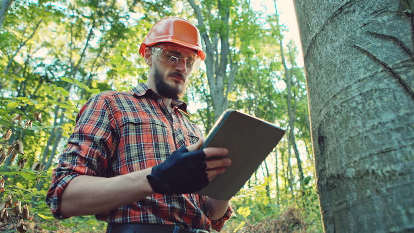 Forestry worker with digital tablet checking trees Royalty-Free Stock Footage #19867282