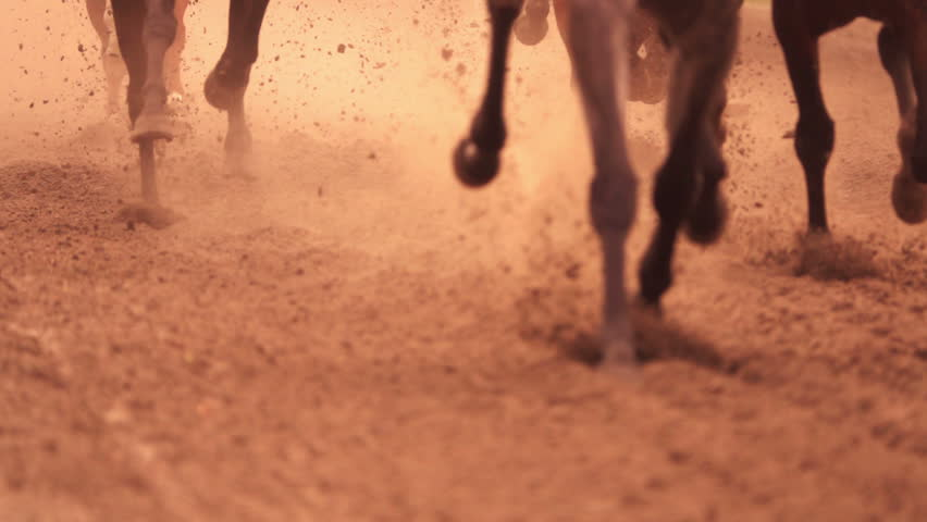 Horse racing. Legs of horses close-up. A lot of dirt under his hooves. Slow motion | Shutterstock HD Video #19878538