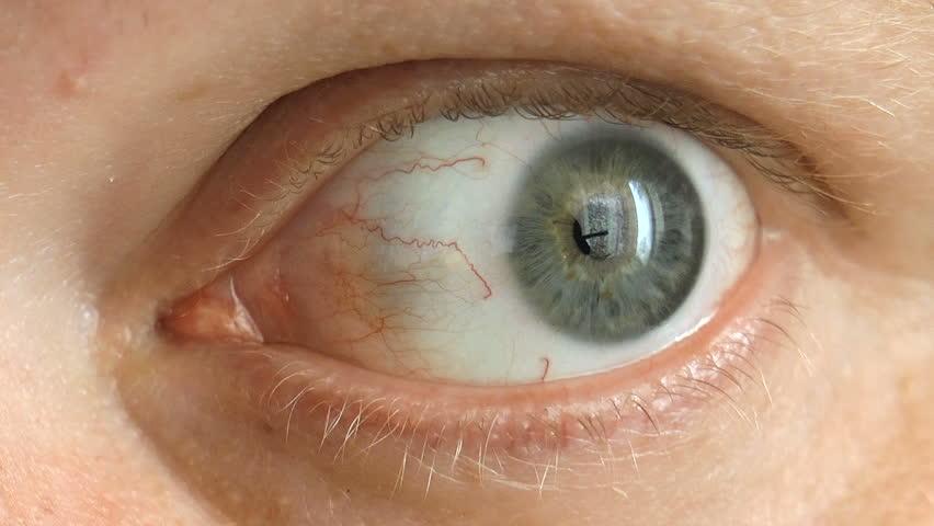The video shows human eye background closeup   Shutterstock HD Video #20022238