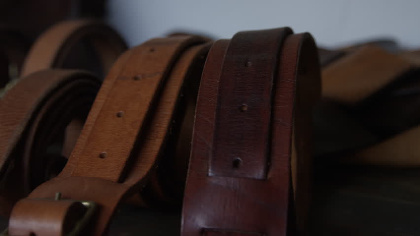 Artisan leather - hand made dog leashes   Shutterstock HD Video #20042665