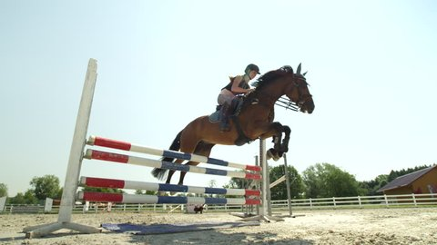 SLOW MOTION, CLOSE UP, LOW ANGLE: Horsegirl riding strong brown horse jumping the fence in sunny outdoors sandy parkour dressage arena. Competitive rider training jumping over obstacles in manege