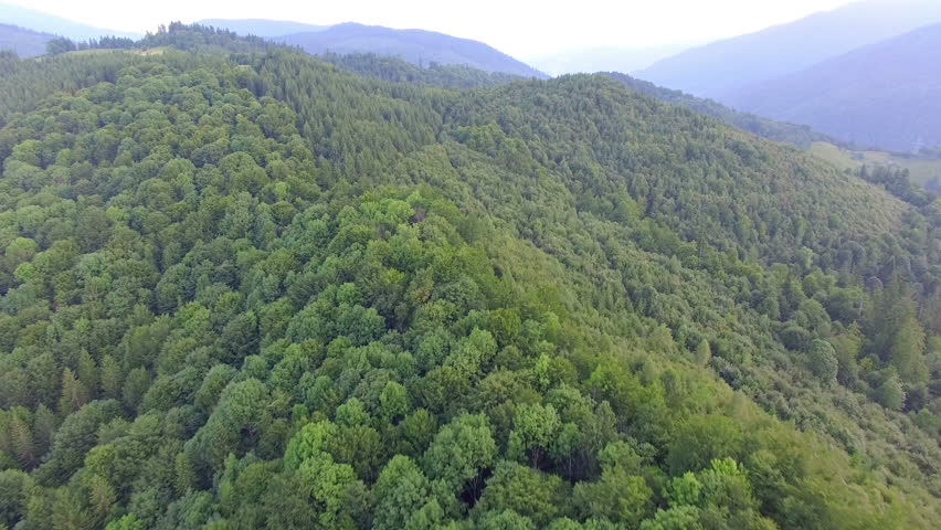 Mountains covered with green forest. aerial footage | Shutterstock HD Video #20120584