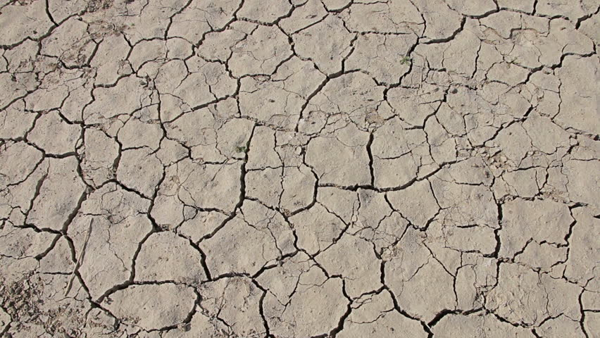 Walking on desert dry soil, first point of view. Climate change, global warming | Shutterstock HD Video #20155498