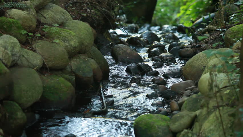 Water Flowing Down Stream Bed