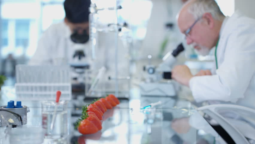 4K Food science researchers working in laboratory, 1 man injecting chemicals into strawberries. Shot on RED Epic. | Shutterstock HD Video #20215222