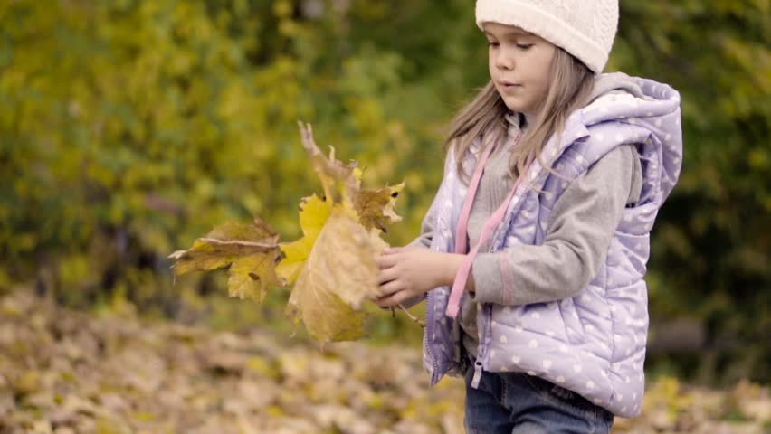 Little cute girl collects fallen autumn leaves in park. Slow motion | Shutterstock HD Video #20230183