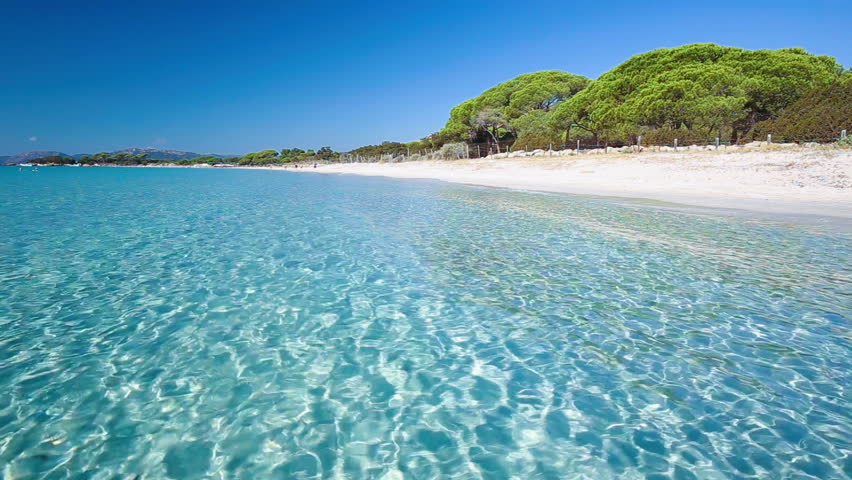 Palomgabbia beach with red rocks, pine trees and azure clear water, Corsica, France.