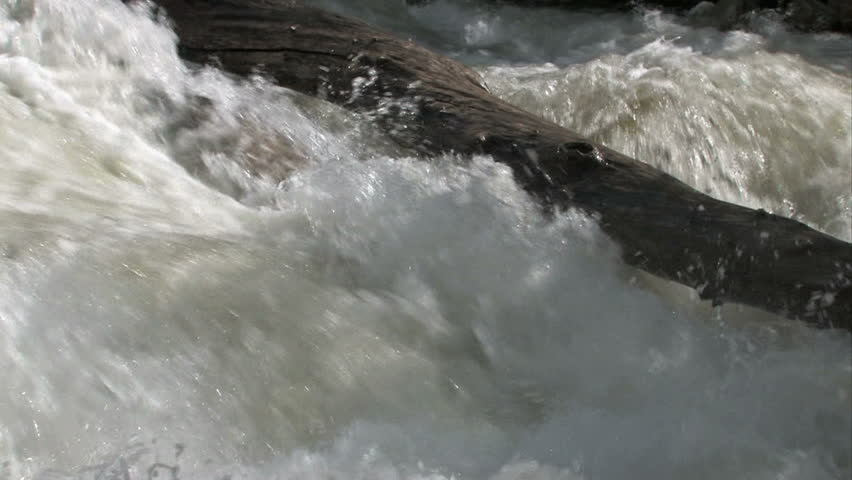 Turbulent flood water in mountain river in Utah. Rapid boiling water from spring snow melt.Log in middle of stream.   Shutterstock HD Video #205276