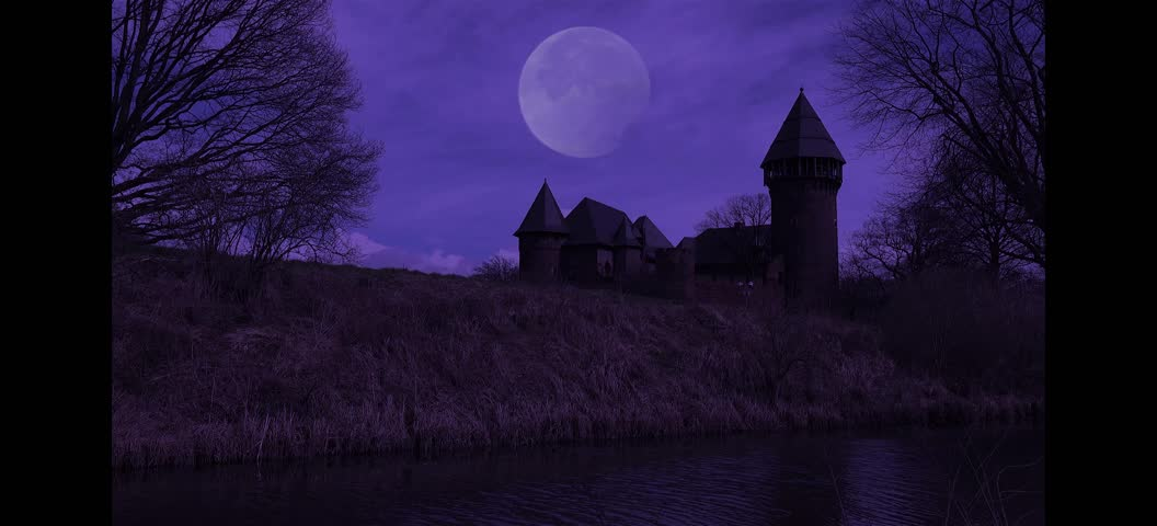 Spooky castle with moon at night timelapse   Shutterstock HD Video #20561335