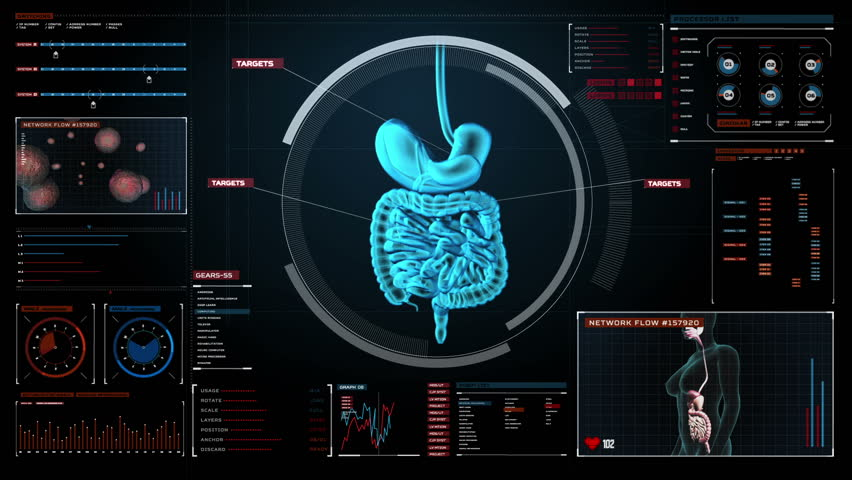 Zooming body scanning internal organs, Digestion system in digital display.Blue X-ray view.