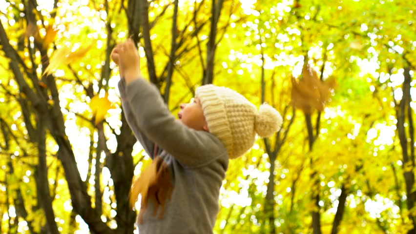 Little boy cathing yellow leaves in autum forest | Shutterstock HD Video #20758810