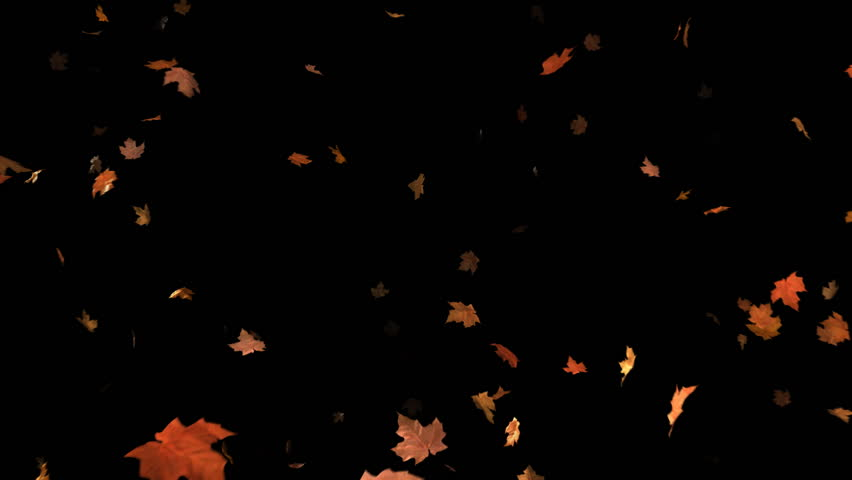 Animated background of blowing leaves. There is also a matte so that the leaves can be composited over your own footage.