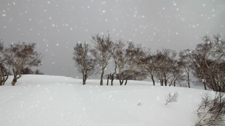 Falling snow in a winter landscape background - looping snow  | Shutterstock HD Video #20945266