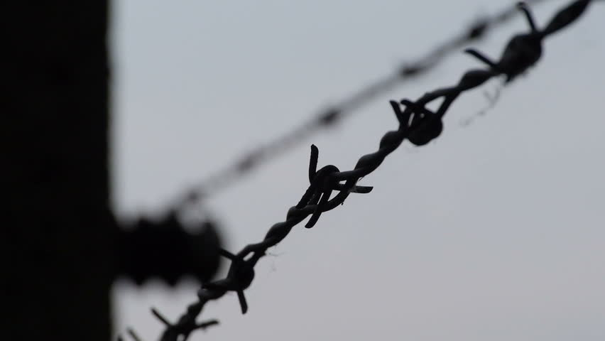 Auschwitz: Close up of the barbed wire in detail with another wire in the background (soft).