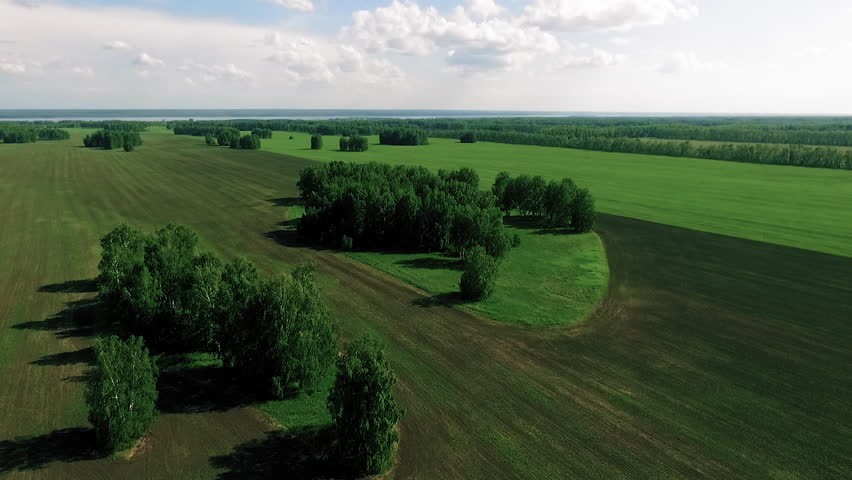 Bird view  ploughed field and forest | Shutterstock HD Video #21011254