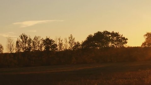 The golden rays of a late afternoon sun