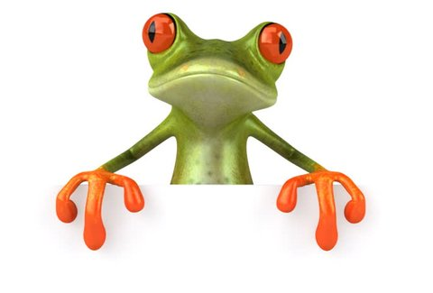 Frog with a blank sign _ NTSC