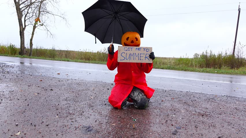 Jack Pumpkinhead on knees beg to get him back to summer, hold cardboard sign with message and black umbrella. Rainy outdoors, wet roadside. Freaky guy in foolery costume, Halloween time prank | Shutterstock HD Video #21251377