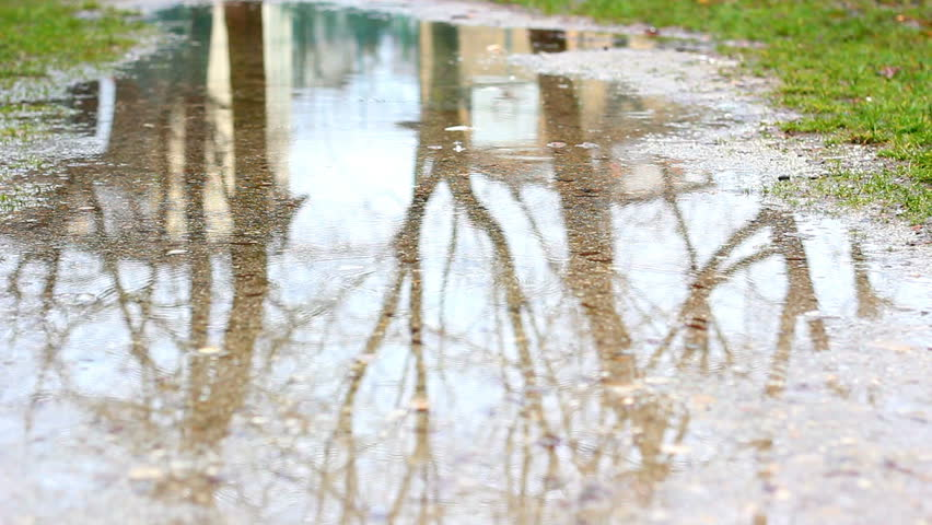 Rainy day in fall. Heavy rain was falling on the ground creating a puddle. Reflection of near trees and house. EOS 550D. HD1080p. Tripod.