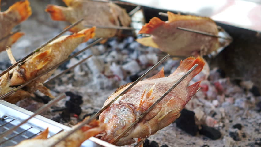 Whole fish roasting machine, red fish grill with charcoal   Shutterstock HD Video #21395098
