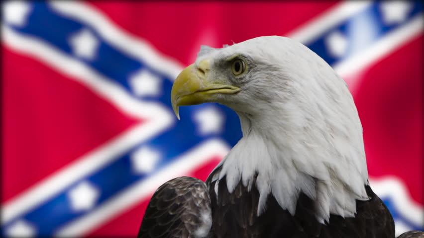 Bald Eagle Medium shot confederate flag #21411556