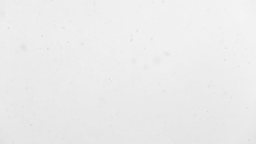 1920x1080 hidef, hdv - Slowly falling snow in large flakes   Shutterstock HD Video #2141837