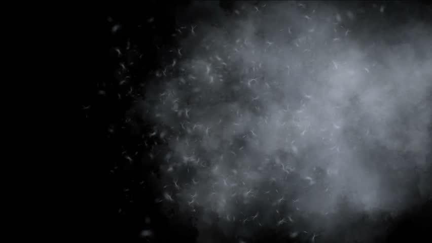 4k flying dandelion catkins in smoke background. 6526_4k | Shutterstock HD Video #21503446