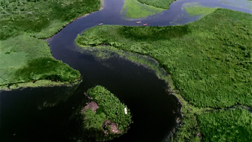 Aerial view of rivers and marshes