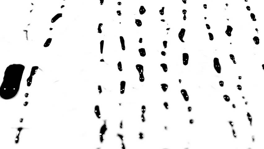 Black ink drips flowing down a pure white background. Fantastic for adding luma matte effects to projects. #21608695