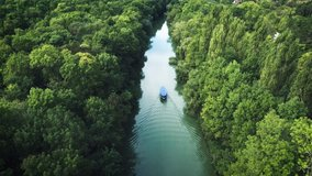 Sailing boat in the river. Tropical forest. Aerial landscape, video