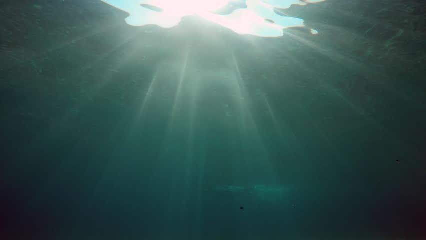 A woman swims undersea in sunny day in Aegean sea in Greece | Shutterstock HD Video #21662434