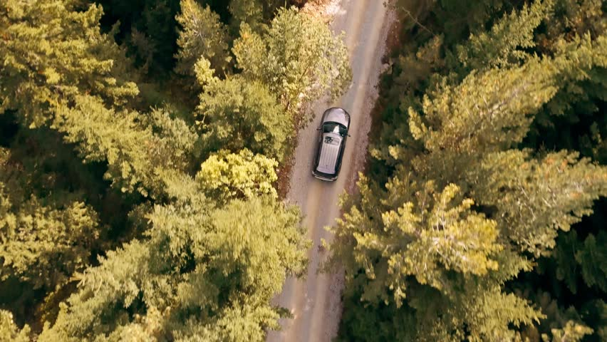 Slow Motion Footage Of Car Driving Through Forest Road Drone Travel Countryside Adventure Tree Autumn Nature Scenic Green Trip