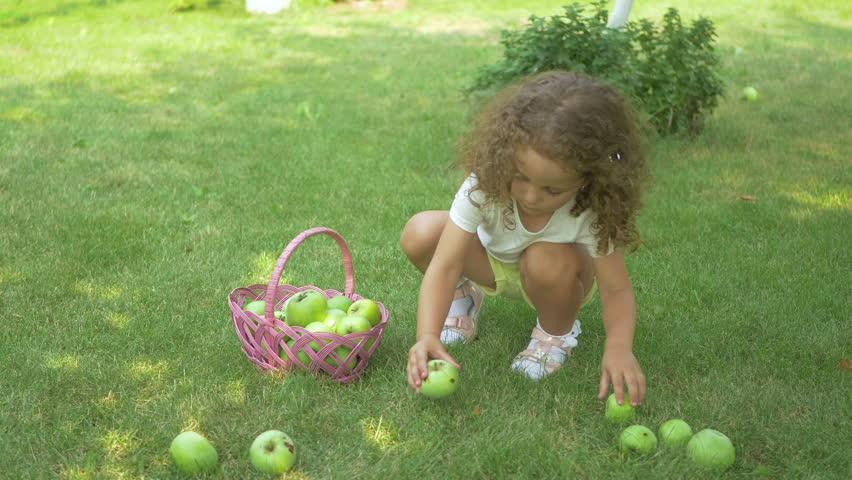 Curly girl picking apples in garden | Shutterstock HD Video #21792559