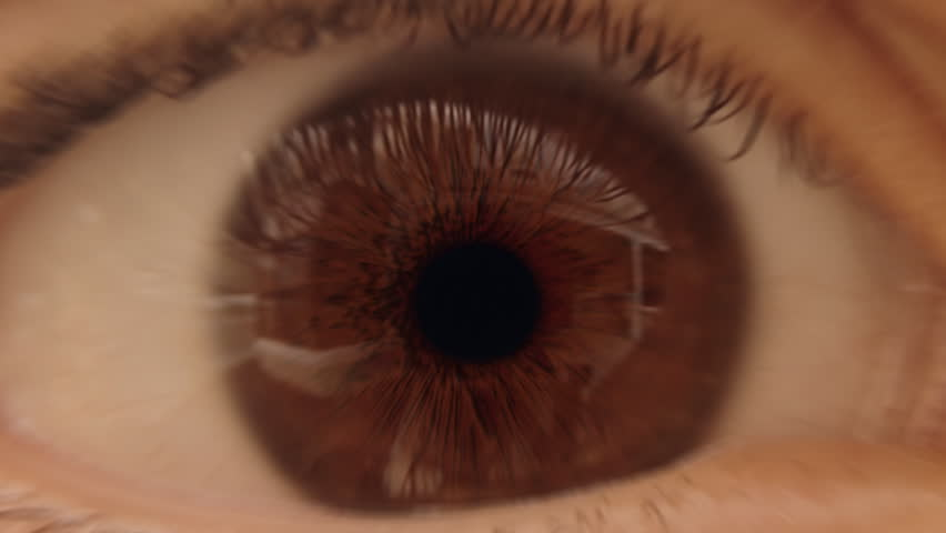Eye zoom transition effect with alpha channel (luma matte). Place your own footage in the background to have it appear through the pupil during zoom. Play in reverse for a zoom out effect. #2194246