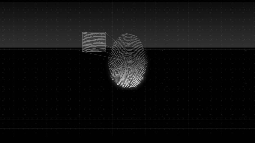 4k Unique fingerprint identity password scan background,tech medical X-ray scanning identification software backdrop,genetic search retrieval Gene sequencing database scanning data. white version | Shutterstock HD Video #22028515