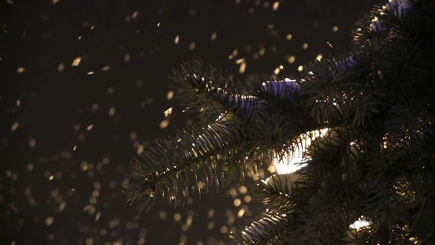 Snow Falls From A Dark Winter Sky On A Snowcapped Fir Tree. A City Lamp Background. ChristmasSpirit